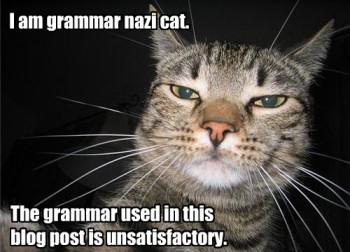 [Image: grammarnazicat.jpg]